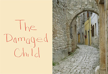 The Damaged Child